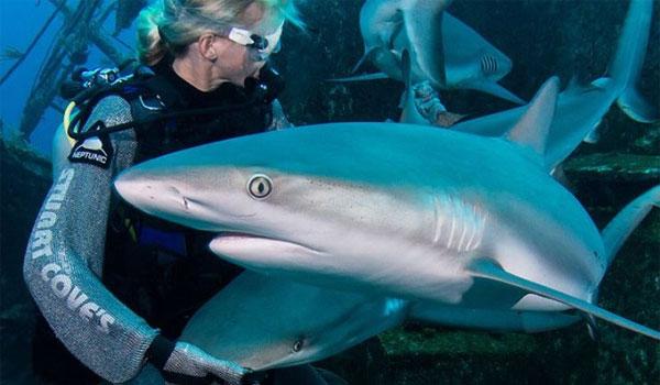 Πάρκινσον: Μεγάλες ελπίδες από ουσία που έχουν οι καρχαρίες