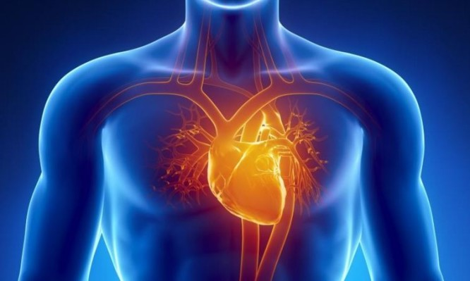 Πού κρύβεται ο μεγαλύτερος εχθρός της καρδιάς