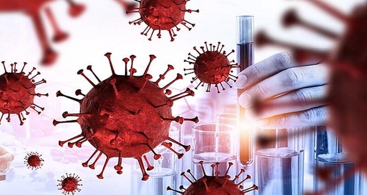 Κορονοϊός: Τα Τ-λεμφοκύτταρα θυμούνται προηγούμενες λοιμώξεις και αναγνωρίζουν τον SARS-CoV-2