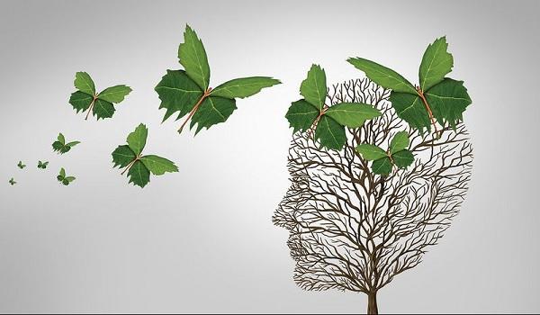 Άνοια: Αντιφλεγμονώδης θεραπεία ξανανιώνει τον γερασμένο εγκέφαλο
