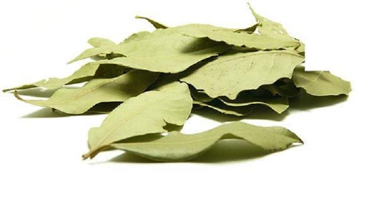 Τι θα γίνει αν βάλεις λίγα φύλλα δάφνης στα συρτάρια της κουζίνας σου;