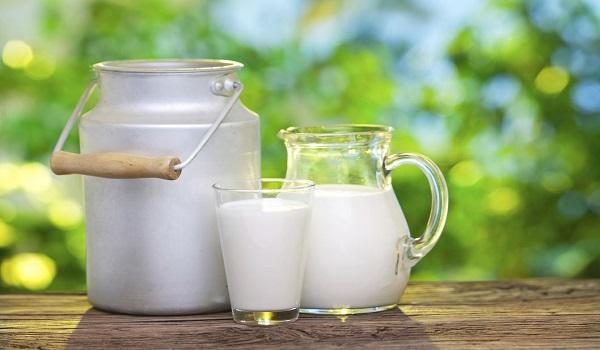 Image result for Επτά τροφές με περισσότερο ασβέστιο από ένα ποτήρι γάλα