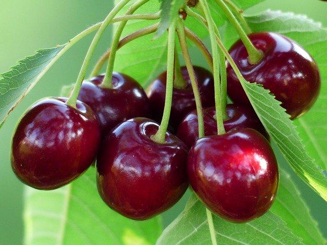 Το φρούτο που ρίχνει την αρτηριακή πίεση μέσα σε δυο ώρες