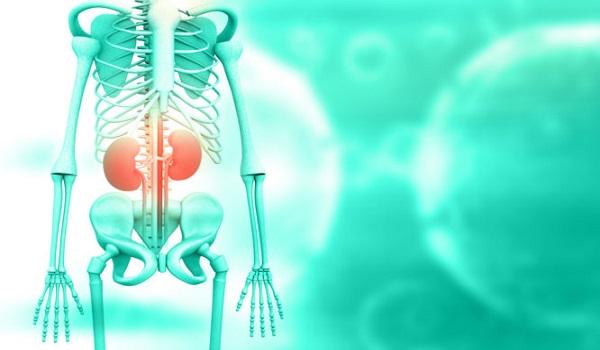 Online τεστ για πρόβλημα στα νεφρά: Ελέγξτε τα συμπτώματα που ίσως αγνοείτε