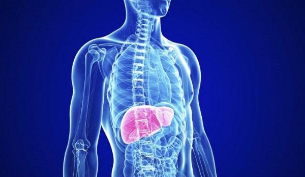 Τα συμπτώματα που μαρτυρούν ένα επιβαρυμένο συκώτι: Πώς να αποτοξινωθείτε σε 30 μέρες!