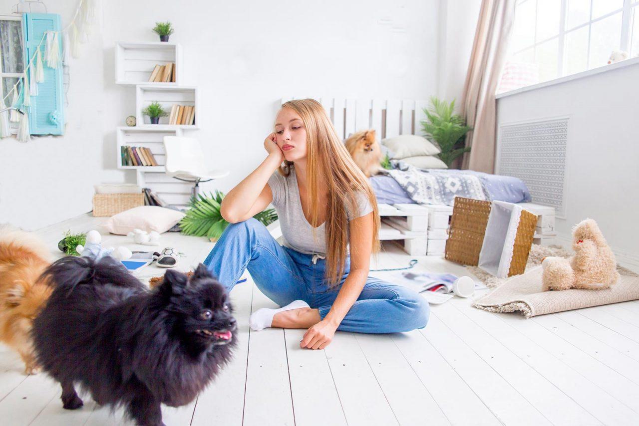 Γιατί ο σκύλος καταστρέφει το σπίτι όταν μένει μόνος του