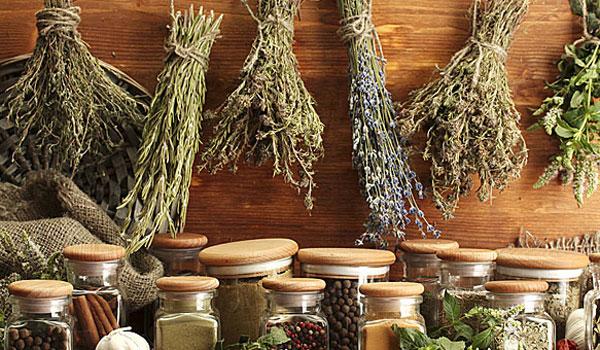 Ποιο ελληνικό βότανο προστατεύει από υπέρταση και καρκίνο