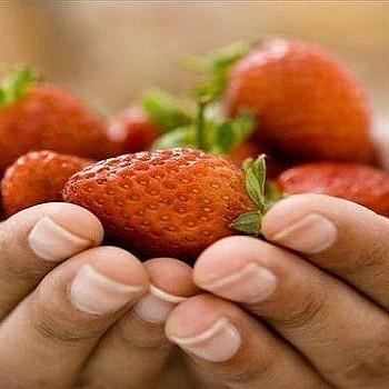 Το κόκκινο φρούτο που προστατεύει την καρδιά και δεν παχαίνει