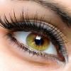 Μολύνουν το μάτι με ιό για να αντιστρέψουν την απώλεια όρασης