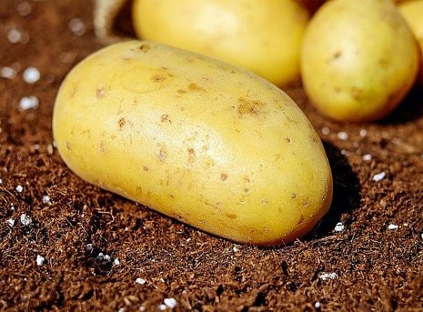 Το αντισυμβατικό τρικ για να ξεπλένεις τις πατάτες