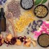 Βότανα για αδυνάτισμα: Λουίζα - Τα 3 εκπληκτικά οφέλη της