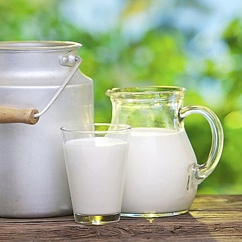 Ποιο είναι το καλύτερο γάλα για ενήλικες;