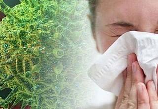Κορονοϊός: Τα 9 μυστήρια της επιδημίας - Αλήθειες και ψέματα
