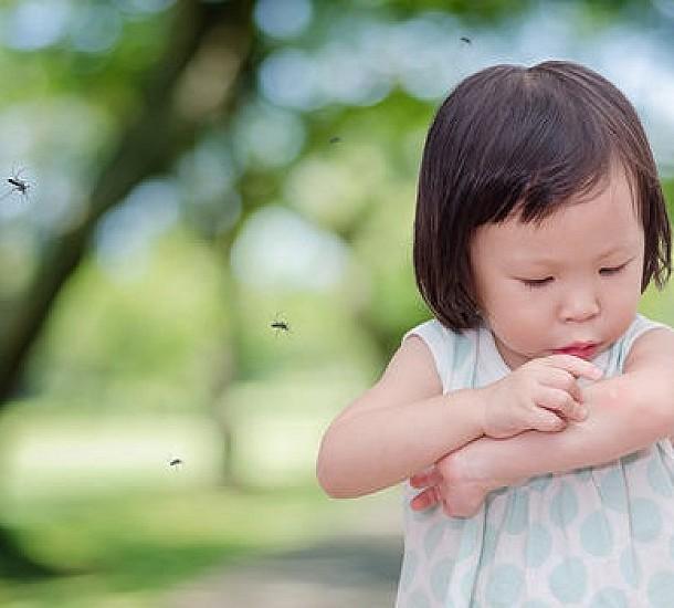 Τσιμπήματα από κουνούπια. Αντιμετώπιση με φυσικά μέσα