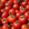 Το πανέξυπνο κόλπο που θα κάνει τις ντομάτες σας να μην χαλάνε