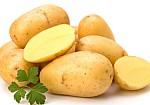 Τι μπορεί να πάθεις από μία πατάτα που έχει πρασινίσει