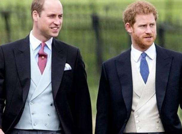 """Στην αντεπίθεση Γουίλιαμ και Χάρι! """"Είμαστε μια χαρά! Σταματήστε να μας προσβάλλετε!"""""""