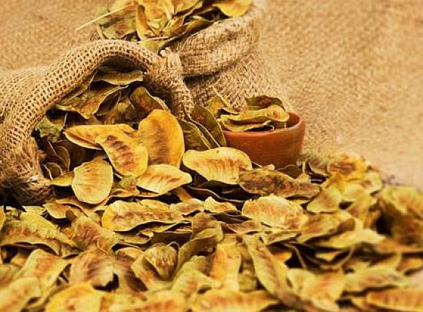 Το βότανο που καταπολεμά την δυσκοιλιότητα και καθαρίζει το πεπτικό σύστημα